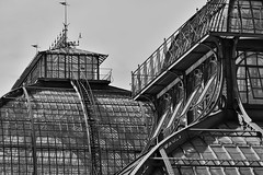 Misa Ato Photography - Palmenhaus Vienne Août 2017 (misaato) Tags: monochrome blackandwhite blackartwhite noiretblanc serre aux palmiers palmenhaus vienne architecture structure metal bw blancetnoir nikon autriche misaato misaatophotography best world photo photographie flickr hiveminer nationalgéographic nikonflickraward grey gris nb blanconegra art time15 albnegru