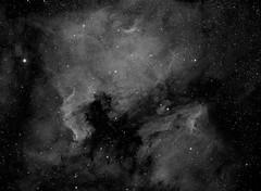 The North America and Pelican nebulae (David Slack Astrophotography) Tags: ngc7000 ic5070 cygnus ha narrowband sxvh9 ccd astronmomy astrophotography stars nebula nebulae takumar