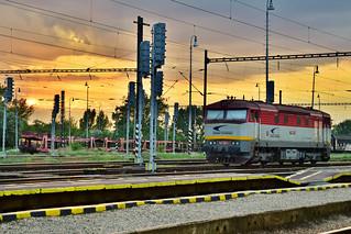 Zamračená při západu slunka / locomotive