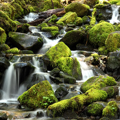 Don't go chasing waterfalls (gwiwer) Tags: usa olympicnp olympicpeninsula washington solducriver waterfall wasserfall longexposure moss moos stones steine flowing water square explore