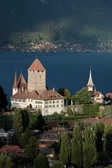 Schloss Spiez ( Baujahr Ursprung 10. Jahrhundert - château castello castle ) in Spiez am Thunersee im Berner Oberland im Kanton Bern der Schweiz (chrchr_75) Tags: christoph hurni schweiz suisse switzerland svizzera suissa swiss chrchr chrchr75 chrigu chriguhurni chriguhurnibluemailch september2017 september 2017 albumzzz201709september albumschlossspiez schlossspiez spiez kantonbern berner oberland berneroberland schloss château castle castello albumregionthunhochformat thunhochformat hochformat susisa kanton bern thunersee alpensee see lake lac sø järvi lago 湖 albumthunersee