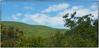 Backbone Rock view (Steve4343) Tags: nikon d70 d70s backbone rock tennessee backbonerock woods forest green blue sky clouds trees damascus virginia shady valley hills mountains steve4343