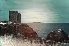 2017 07 25 Elie IR 720nm - 16b (Mister-Mastro) Tags: elie scotland schottland lighthouse leuchtturm 720nm ir infrared fullspectrum sea ruin ruine watching