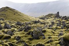Berserkjahraun (pchgorman) Tags: iceland snæfellsnes berserkjahraun mosses lava landscapes august norðvesturkjördæmi