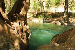 Río Azul ll (Guido De León) Tags: visitguatemala guatemala