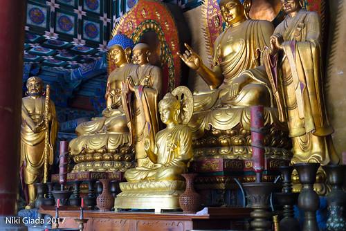 Shaolin Temple - Buddhas