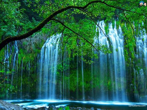Wallpaper Pemandangan Alam Untuk Hp Android A Photo On