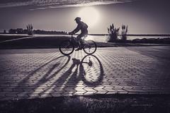 Tattoo (Alicia Clerencia) Tags: backlighting contraluz sunset blackwhite sombra shadow bicicleta bike
