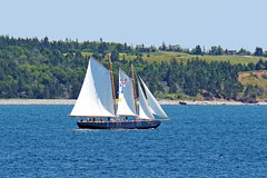 DSC08371 - Katie Belle (archer10 (Dennis) 101M Views) Tags: halifax ship tall sails sony a6300 ilce6300 18200mm 1650mm mirrorless free freepicture archer10 dennis jarvis dennisgjarvis dennisjarvis iamcanadian novascotia canada katiebelle