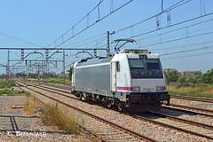 253-003 ROSCO (ɢ. ʙᴇʀᴇɴɢᴜᴇʀ [ ō-]) Tags: 253 253003 rosco railroad railway locomotive ffcc