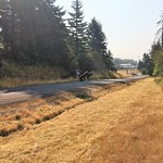 Mowing along I-5 in Vancouver thumbnail