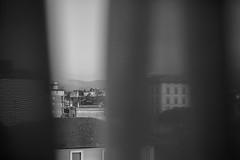 (Jason Clifton) Tags: canon canon5dmarkiii 5dmarkiii 5dm3 ef35mmf14lusm 35mmf14l 35mm 35mml streetphotography documentary photojournalism nationalgeographic natgeo primelens nozoom noflash availablelight existinglight naturallight architecture italy blackandwhite bnw bw monotone monochrome jasonclifton jasoncliftonflickr flickrjasonclifton curtain window room roomwithaview hotel hotelroom tuscany