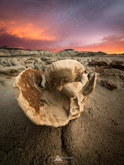 Egg Factory, Bisti Badlands, New Mexico (www.fourcorners.photography) Tags: eggfactory bistibadlands farmington newmexico erosion sunset peterboehringerphotography fourcornersphotography