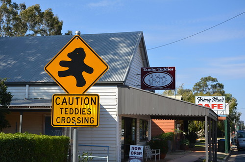 Teddies Crossing