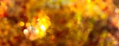 Inside Supernova (Uup115) Tags: macromondays member'schoiceabstractmacro bokeh blurr blurred motion abstract macro orange yellow glass lumia1520 cameraphone