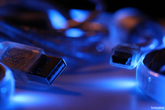macromondays connection (Photo: fotowayahead on Flickr)