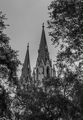 The Cathedral of St. John the Baptist (Brandon Westerman WNP) Tags: the cathedral st john baptist savannah georgia church bw blackandwhite monochrome bnw history