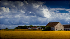You may buy houses .. (Beppe Rijs) Tags: fjord landschaft natur landscape nature wolken wolkendecke field feld gras horizont horizon clouds farbig colored line linie rural ländlich pastell fertile fruchtbar freshly frisch color farbe acker blue blau yellow gelb vivid lebhaft denmark dänemark samsö island insel wheat weizen haus house