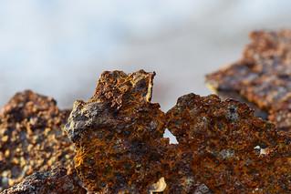 Rusty Mountains - Macro Mondays