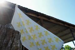 L'historique, le français américain (moonbird) Tags: missouri stegen stegenevievemo roadtrip ruralamerica smalltownamerica midwest friendliesttown frenchcolonial