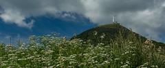 Le Puy de Dôme (France) (christian.rey) Tags: orcines auvergnerhônealpes france fr auvergne puydedôme parapentistes fleurs flower volcan panorama paysage montagne mountain vulcain landscape sony alpha 77 1650