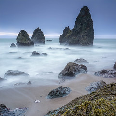 Enchanted Stacks.jpg (Darren Berg) Tags: sanfrancisco long exposure 30s stack mist filter nd seaweed beach sand waves ethereal dream turquoise square