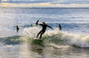 AY6A0465 (fcruse) Tags: cruse crusefoto 2017 surferslodgeopen surfsm surfing actionsport canon5dmarkiv surf wavesurfing höst toröstenstrand torö vågsurfing stockholm sweden se