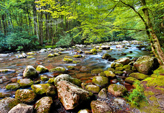 Middle Prong Little River, Great Smoky Mountains National Park (klauslang99) Tags: nature naturalworld northamerica klauslang middle prong river great smoky mountains national park landscapes landscape water