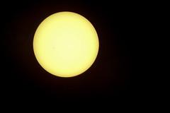 P8210296 (David J. Thomas) Tags: solareclipse lyoncollege batesville arkansas science astronomy sun moon students faculty staff telescope