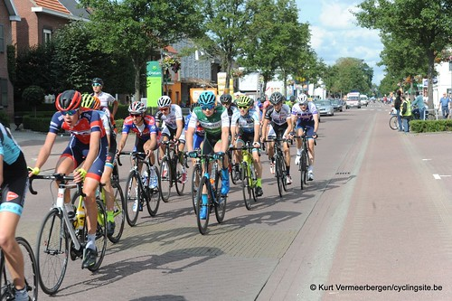 Omloop Vlaamse gewesten (426)