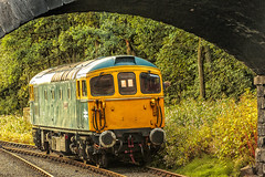 CVR_2017_08_24_036 (Phil_the_photter) Tags: churnetvalleyrailway s160 5197 cheddleton class33 33102 sophie