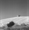 Landscape in Molise (Mark Dries) Tags: markguitarphoto markdries hasselblad500cm sonnar f4150mm ilfordfp4 xtol11 900 10 6x6 mediumformat film filmphotography yellowfilter3x