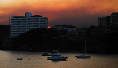 It's the end of the world as we know it (geemuses) Tags: littlemanly sydney nsw nature northernbeaches view landscape sunset water reflection fiery apocalypse bloodred sun smoke haze sydneyharbour