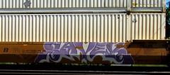 savek (timetomakethepasta) Tags: savek freight train graffiti art intermodal benching selkirk new york photography