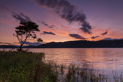 A Lone Tree at Sunset .. (Gordie Broon.) Tags: lochness sunset hills thegreatglen lonetree atardecer scotland schottland landscape glow heuvels silhouettes escocia paysage ecosse dores inverfarigaig scenery collines scozia caledonia invernessshire colinas summer 2017 szkocja alba inverness foyers lago lac gordiebroonphotography scenic nessie glenalbyn paisaje see paesaggio canon5dmklll canon1635f4l clouds sky scottishhighlands geotagged hugeln photography faultline