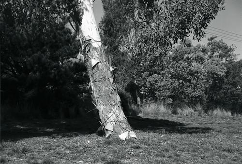 Frame 20.jpg