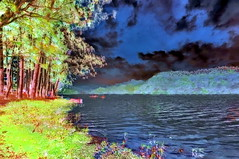 India - Kerala - Munnar - Kundala Lake - 13bb (asienman) Tags: india kerala munnar kundalalake asienmanphotography asienmanphotoart