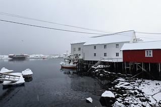 Fishing boats-wooden white port warehouses-red rorbuer cottages. Hamnoy-Reine-Moskenes-Lofoten-Nordland fylke-Norway. 0389