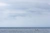 Porticello, settembre 2017 (peppe lazzara) Tags: giuseppelazzara nkond7200 palermo porticello santaflavia barca clouds mare nikon18140 nuvole sea spiaggia