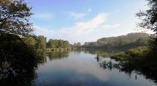 Revier Blankenfelde Sommer 2017  NSG Karower Teiche Inselteich