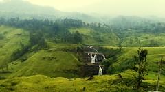 Nature#beauty#mountains#waterfalls#fog#trees#plants (milu20012002) Tags: waterfalls mountains beauty plants trees fog
