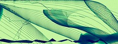 whales (heroyama) Tags: whale art abstract drawing image animal
