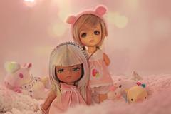 Sweet Dreams (~Felka) Tags: lati latidoll yellow limited tan skin aladdin cookie brown mystic haru doll tiny bjd