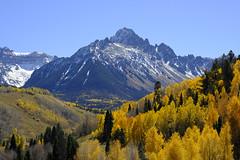 Mt. Sneffles. A Fourteener (Chuckcars) Tags: colorado sneffles fourteener 14er autumn color yellow gold ouray san juan snow fall aspen confier spruce