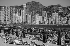 Benidorm. (CWhatPhotos) Tags: cwhatphotos benidorm beach spain sand coast people sun sunbathe sunbed sunbathing olympus omd em10 digital camera photographs photograph pics pictures pic picture image images foto fotos photography artistic that have which with contain