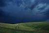 The storm and the wheat field (Luc Stadnik) Tags: storm brazil parana wheat fielddarkrainweather darkclouds sky