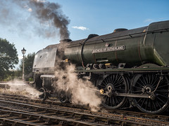 MRC2017-28 (Dreaming of Steam) Tags: 6233 46233 duchess duchessofsutherland heritage heritagerailways lms midlandrailwaycentre princesscoronation princesscoronationclass railway stainer steam steamengine sutherland train vintage engine locomotive railroad smoke steamlocomotive