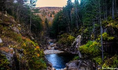 Flume Gorge Falls in Lincoln, New hampshire (Jay Dee Texas) Tags: newhampshire flumegorge forest whitemountain nationalpark eastcoast waterfall mountains fall nikond700 28mm