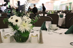 Green & White Homecoming Brunch, October 2017
