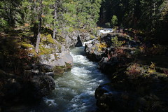 The Upper Rogue, in its narrow slot canyon (rozoneill) Tags: upper rogue river trail union creek natural bridge oregon hiking siskiyou national forest gorge viewpoint